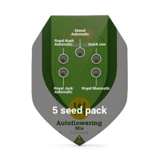 Royal Queen Seeds Autoflowering Mix autofem 5er