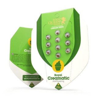 Royal Queen Seeds Royal Creamatic autofem 10er